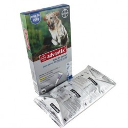 Advantix Solucion Spot-on para perros de mas de  25 Kg.Caja con 4 pipetas de 4,0 ml
